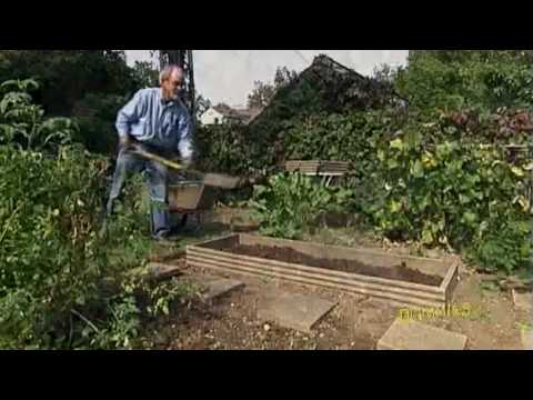 How to Plan and Plant Your Home Garden